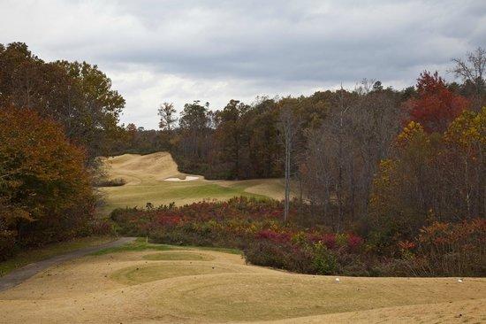 Brasstown Valley Resort & Spa: Golf course