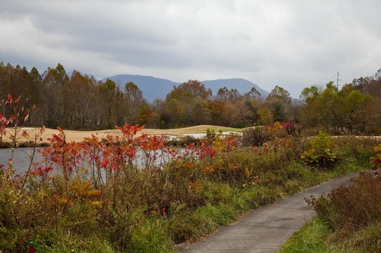 Brasstown Valley Resort & Spa: Golf Course