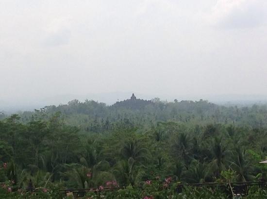 Plataran Borobudur Resort & Spa: Borobudur from terrace