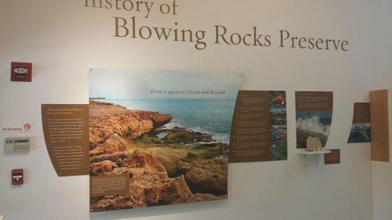 Blowing Rocks Preserve: Nature Center