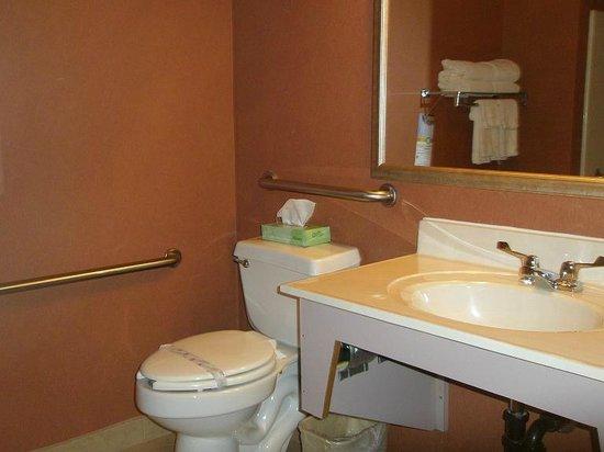 Quality Inn Bemidji: Sink area