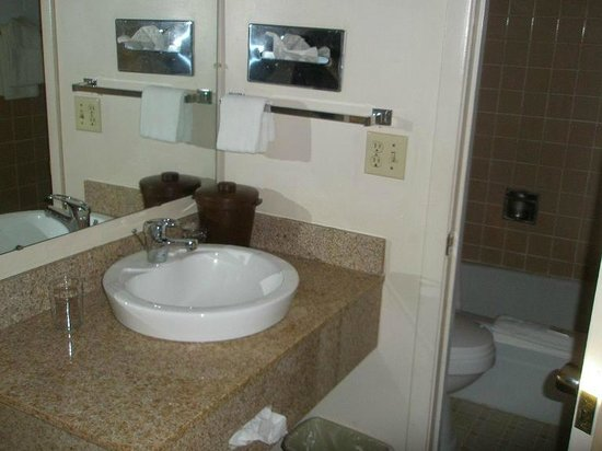 Traveler's Lodge: (nice) sink