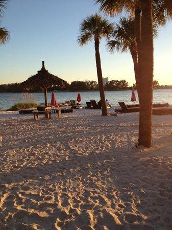 DreamView Beachfront Hotel & Resort: Private beach