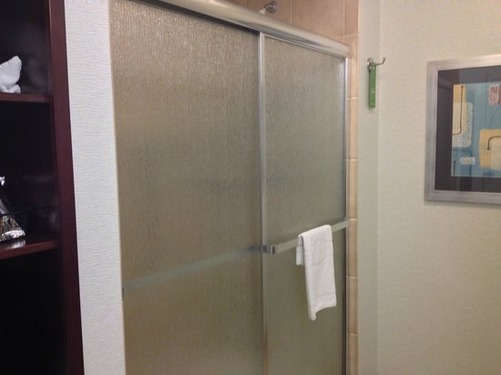 Hampton Inn & Suites Wilkes-Barre : Large Shower
