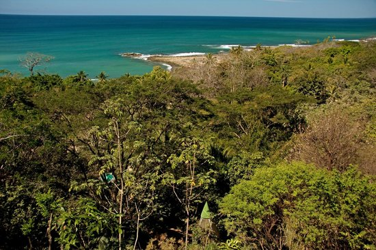 Pachamama Tropical Garden Lodge: View of the beech from on top of the hill.