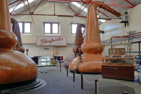 Glenfarclas Distillery: The stills