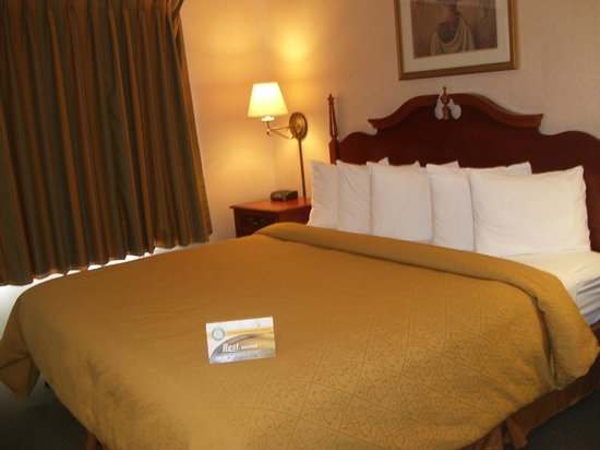 Quality Suites: Suite 200 - King Bed