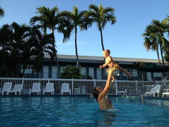 Blue Marlin Motel: Un bel tuffo in piscina all'ombra delle palme!