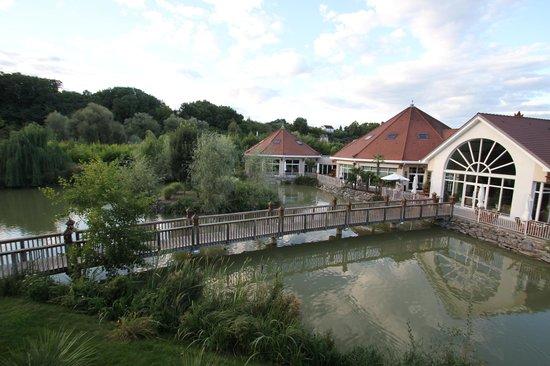 Les Jardins de Beauval: 部屋からの眺望