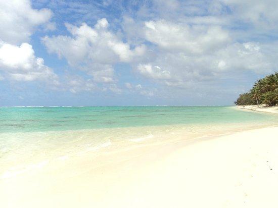 Makayla Palms: Titikaveka Beach