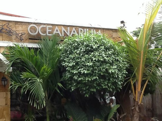 Rainforest Park Cebu: Entrance to the Oceanarium