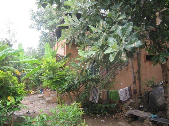 Gopi Guest House : Plantation