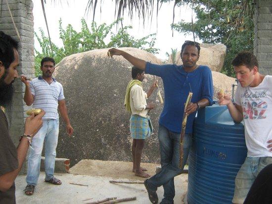 Gopi Guest House : Eating sugarcane at the plantation