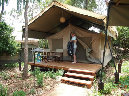 Wildebeest Eco Camp: An example of the accommodation