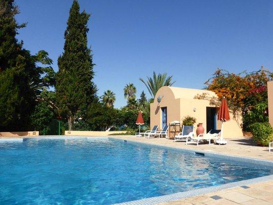 Villa Mandarine : Inviting pool