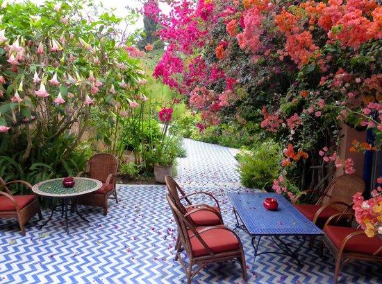 Villa Mandarine : A corner of the terrace