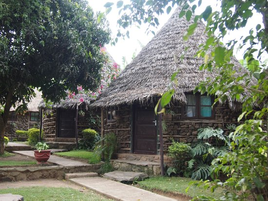 L Oasis Lodge and Restaurant Hotel: The huts