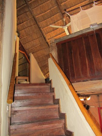 Lokuthula Lodges: Upstairs