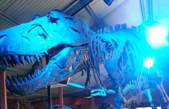 Denmark Dinosaur World