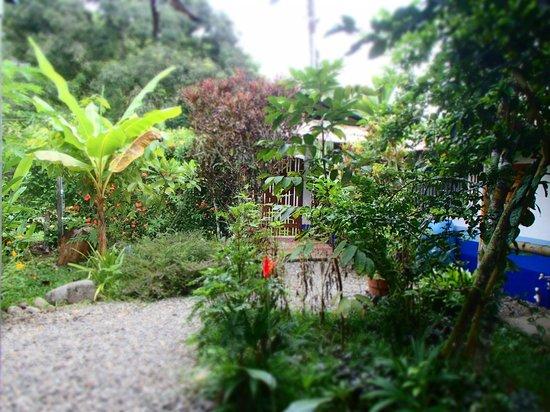 Hotel Los Suenos: Garten