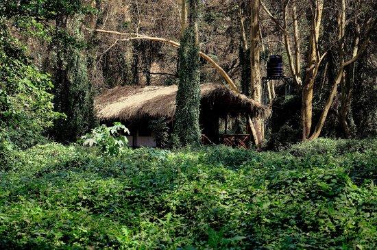 Migunga Tented Camp: Zelt