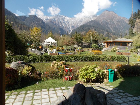 Solang Valley Resort: Lawn