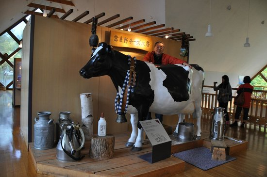 Furano Cheese Craft Center: A Rubber Mockup of Cow's Udder to Experience Milking a Cow