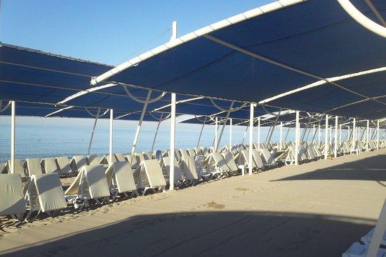 Sea World Resort & Spa: plage