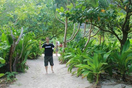 Aloha Ocean Adventures: Amazing landscape