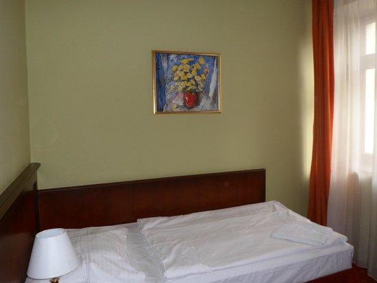 Hotel Dalimil: Dalimil двухместный номер
