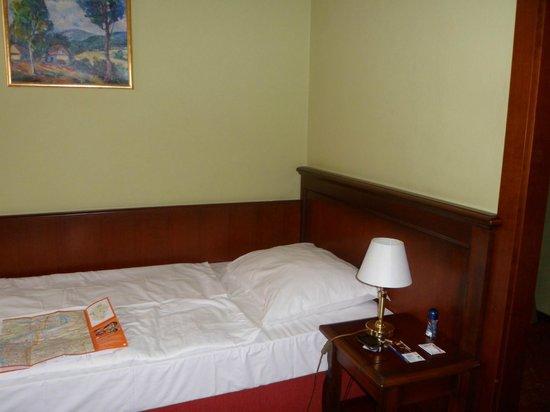 Hotel Dalimil : Dalimil двухместный номер