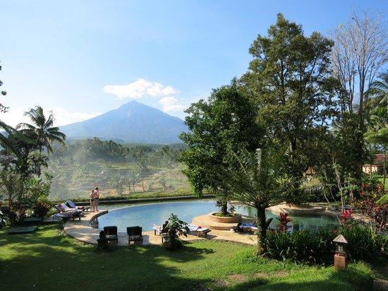 Ijen Resort & Villas : Beautiful setting among the rice fields and mountains