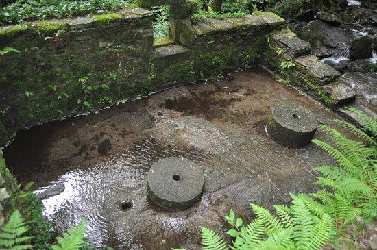 Monasterio de Caaveiro: Ruinas de los molinos.