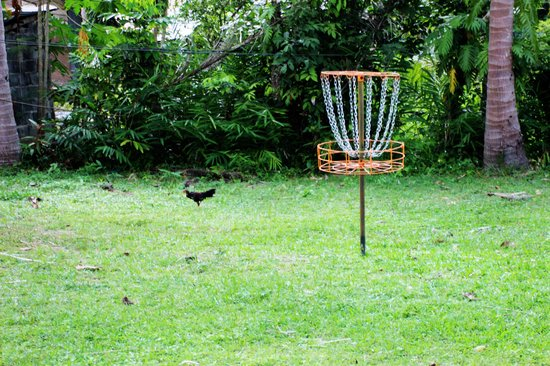 Samui Frisbee Golf: nice professional baskets