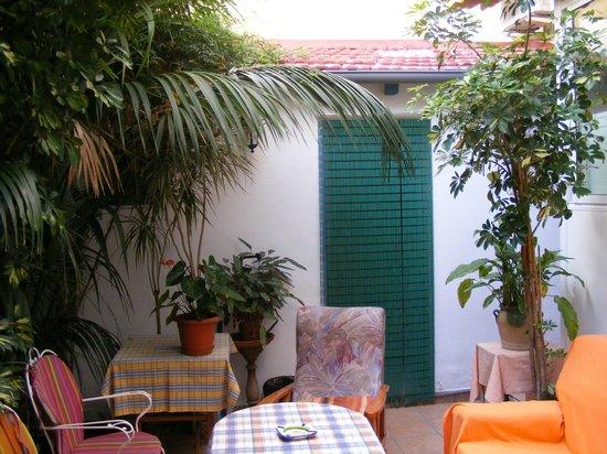 Guest House: jardín del apartamento patio