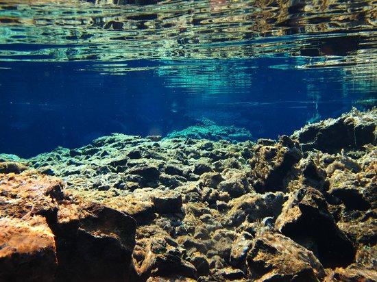 DIVE.IS: Silfra Iceland 2013