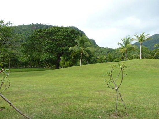 Pico Sands Hotel : landscape
