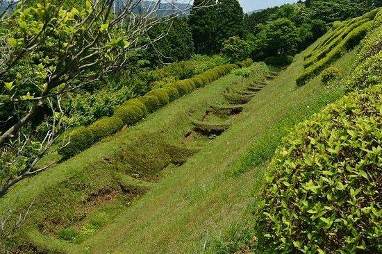 Ruins Yamanaka Castle : 岱崎砦の畝堀