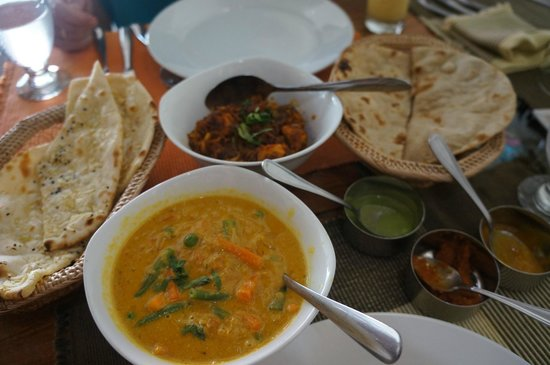 Dakshin's : vegetable korma, chicken chili, nan, roti