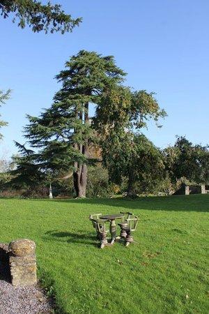 The House near Bath: Grounds