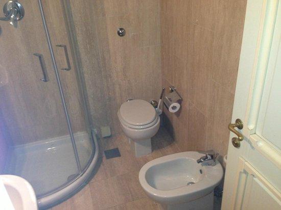 Plaza e De Russie Hotel : Bathroom....small shower
