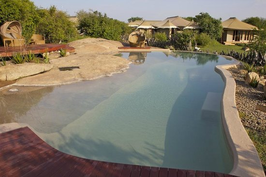 Sayari Camp, Asilia Africa: Swimming Pool