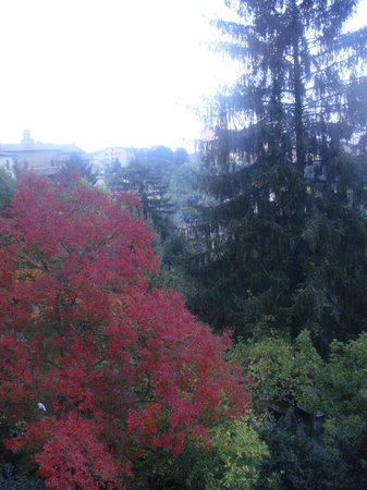 Bed and Breakfast Pantaneto Palazzo Bulgarini: Autumn view from Girasole room' balcony.