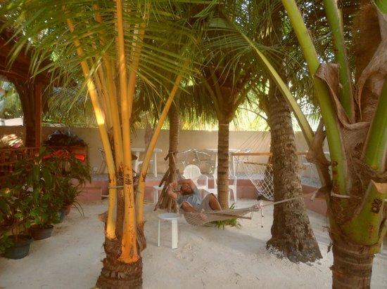 Stingray Beach Inn: 1