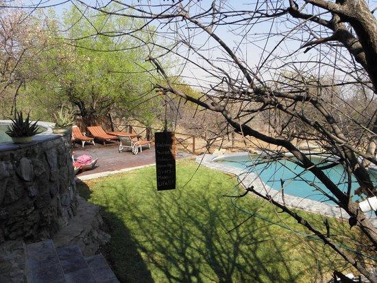 Toshari Lodge: The pool area