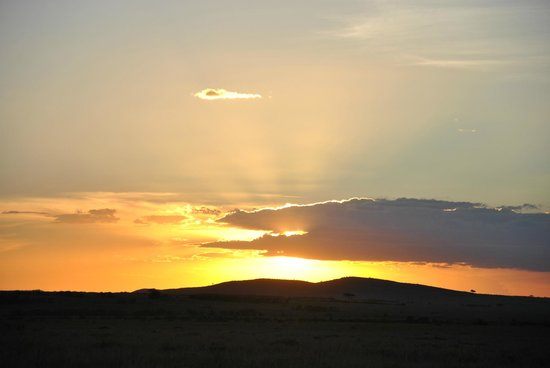 Thomas Tours & Safaris - Private Day Tours: Tramonto - Masai Mara