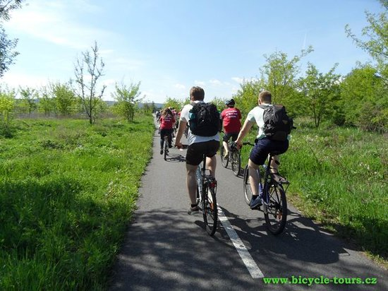Ave Bicycle Tours - Day Tours: Bikers