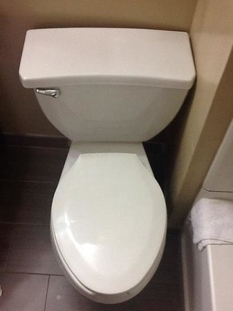 Best Western Kimball Inn: crooked toilet