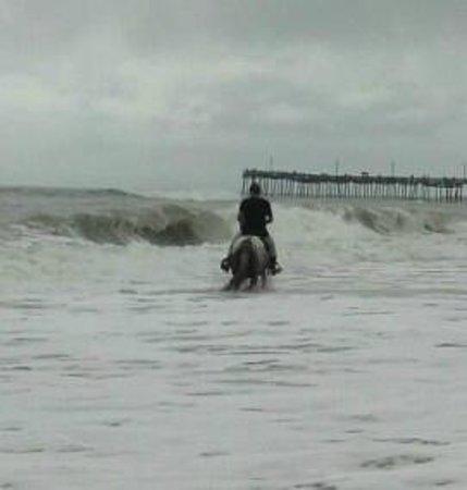 Picture Of Virginia Beach Boardwalk