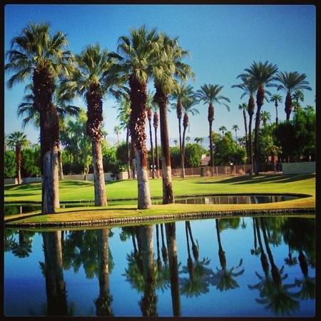 Marriott's Desert Springs Villas I: the property
